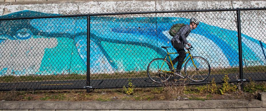 Steamroller riding image 2