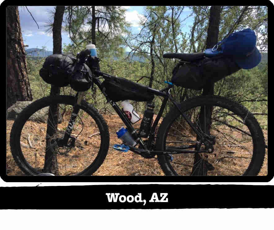 Left side view of a Surly bike, loaded with gear, in the pine trees - Wood, AZ tag below image