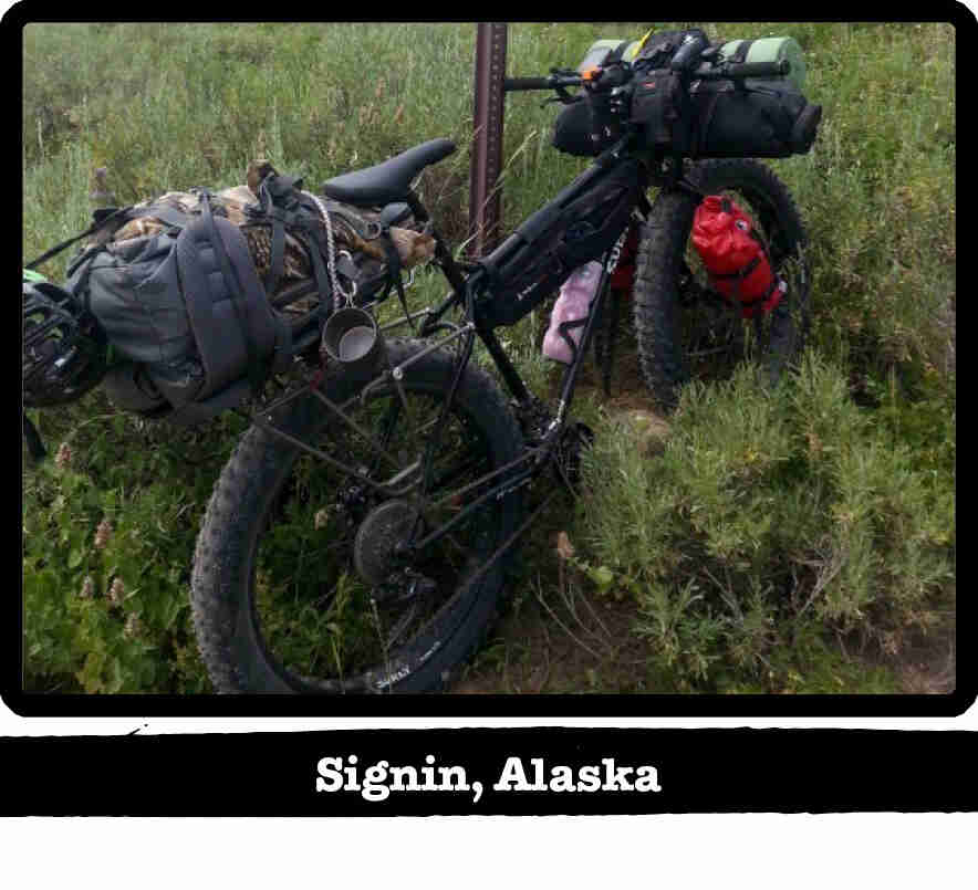 Rear right side view of a Surly fat bike, loaded with gear, in deep brush - Signin, Alaska tag below image