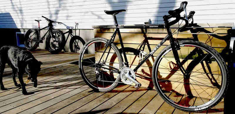 Right side view of a black Surly Cross Check bike, parked on the deck of a house, next to a black dog