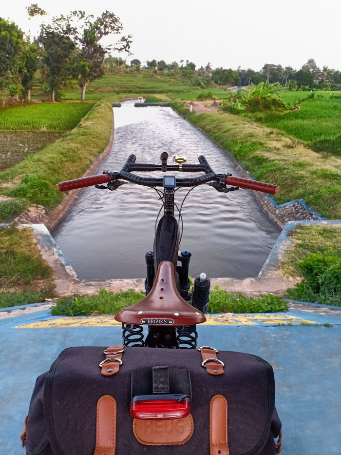 Rear view of Surly bike with a seat pack and Brooks seat facing a canal between rice fields