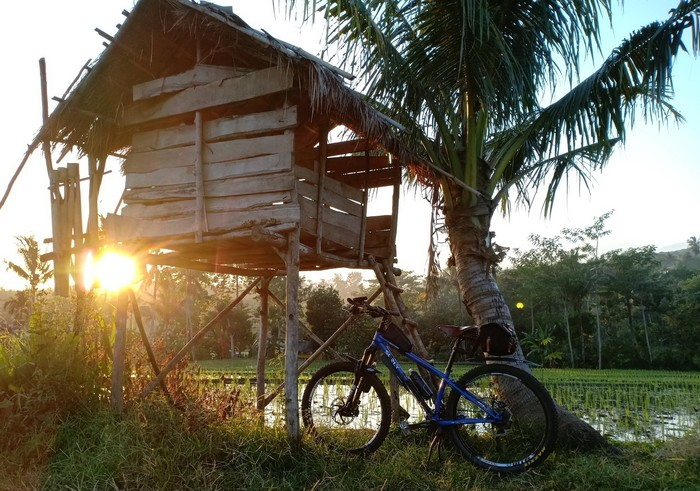 Blue Surly Karate Monkey bike in front of a palm tree and a shack on stilts with the sun just above the trees