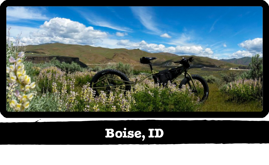 Left side view of a Surly Big Fat Dummy bike, green, in tall prairies grass - Boise, ID tag below image