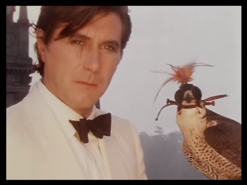 Front view of Brian Ferry, wearing a white tuxedo stares, stare forward with a falcon to his left side