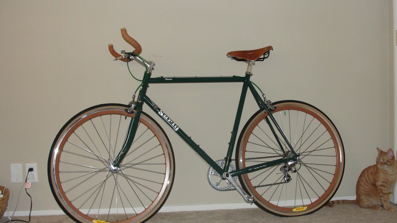 Left side view of a green Surly Pacer bike, leaning on an interior wall, with a cat sitting behind the back wheel