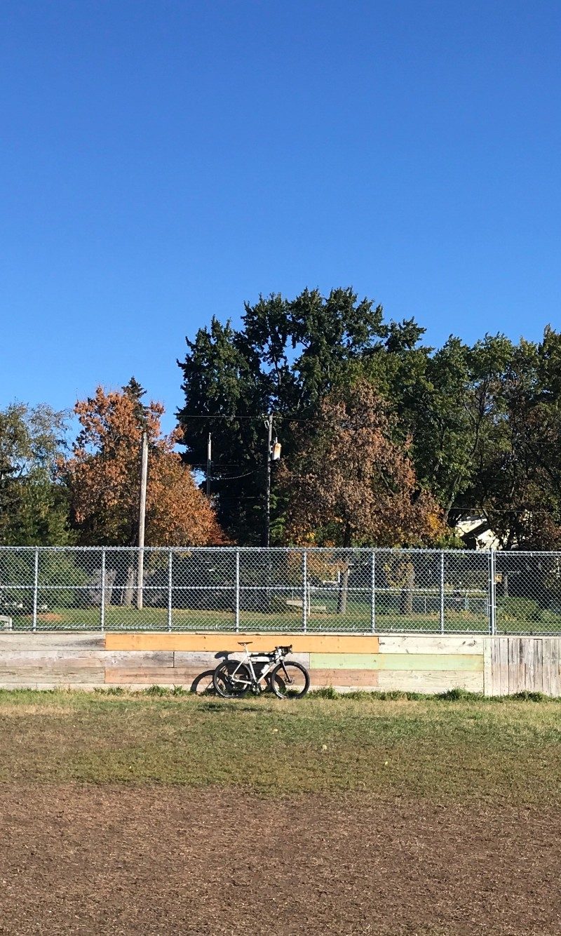 Surly Midnight Special Bike on grass leaning on a board wall with chain link above in a park, trees in the background