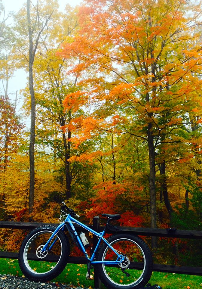 Left side view of a blue Surly Ice Cream Truck bike, leaning on a wood rail fence, with changing leaves in background