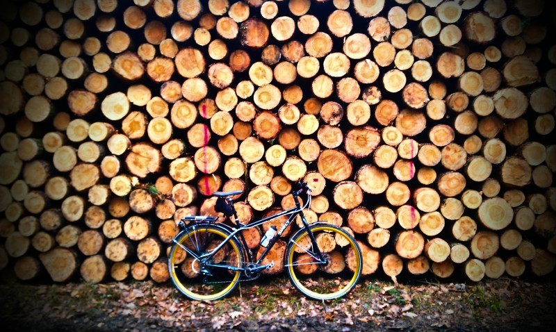 Right side view of a Surly bike, leaning on the stump end of a large stack of cut logs