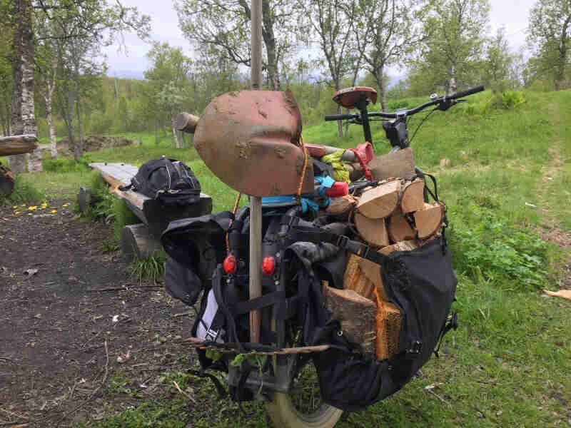 Rear view of a Surly Big Dummy bike, loaded with camping gear, parked at a campsite in a grassy field with trees