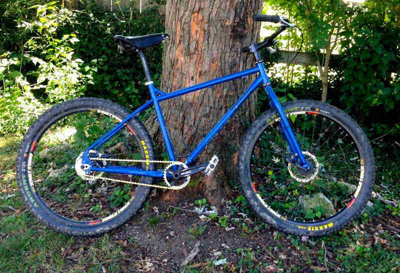 Right profile of a  blue Surly Troll bike, leaning against a tree, with the woods in the background
