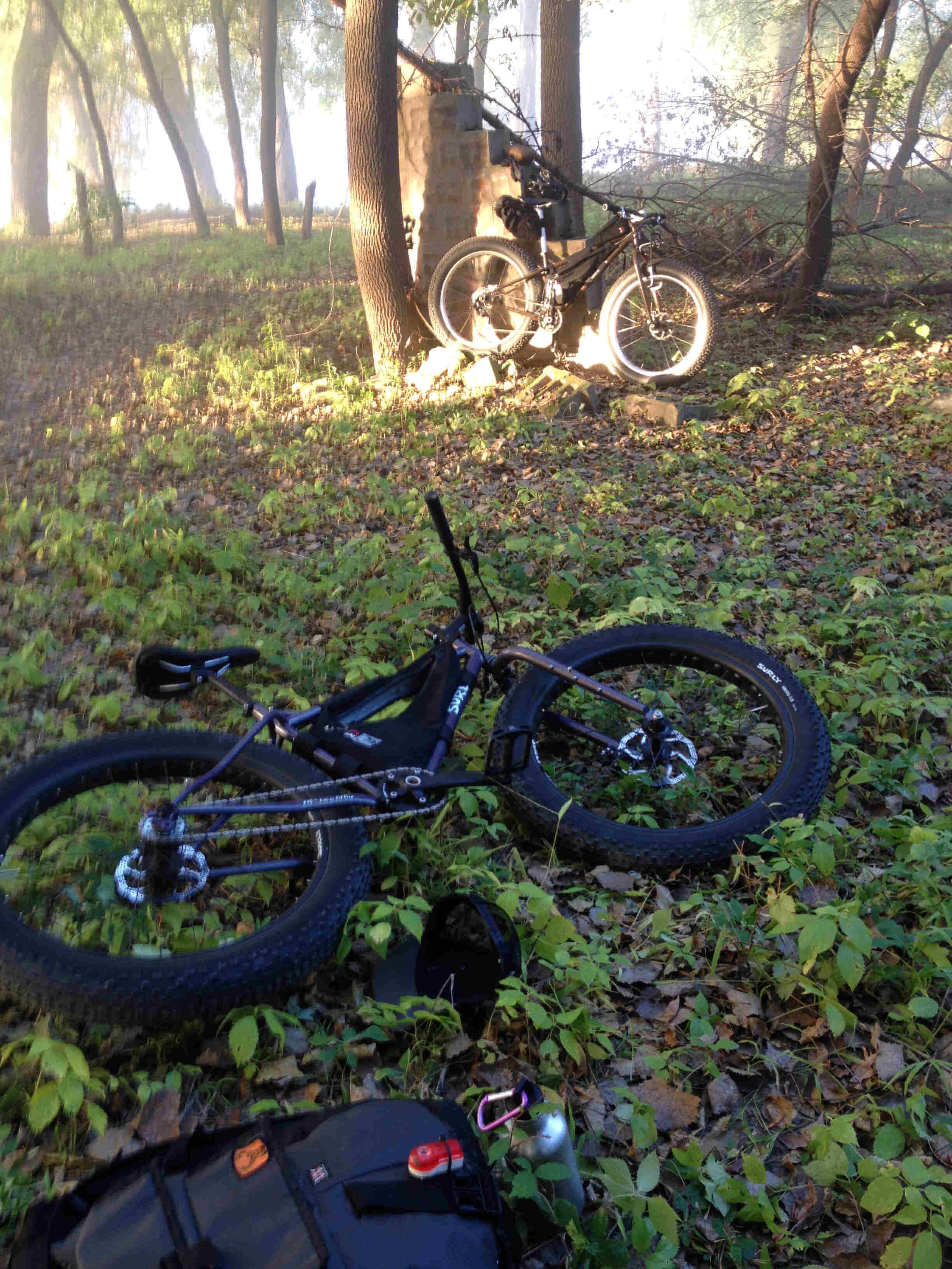 Downward, right side view of a Surly Pugsley fat bike, loaded with gear, laying on a weedy clearing in the woods