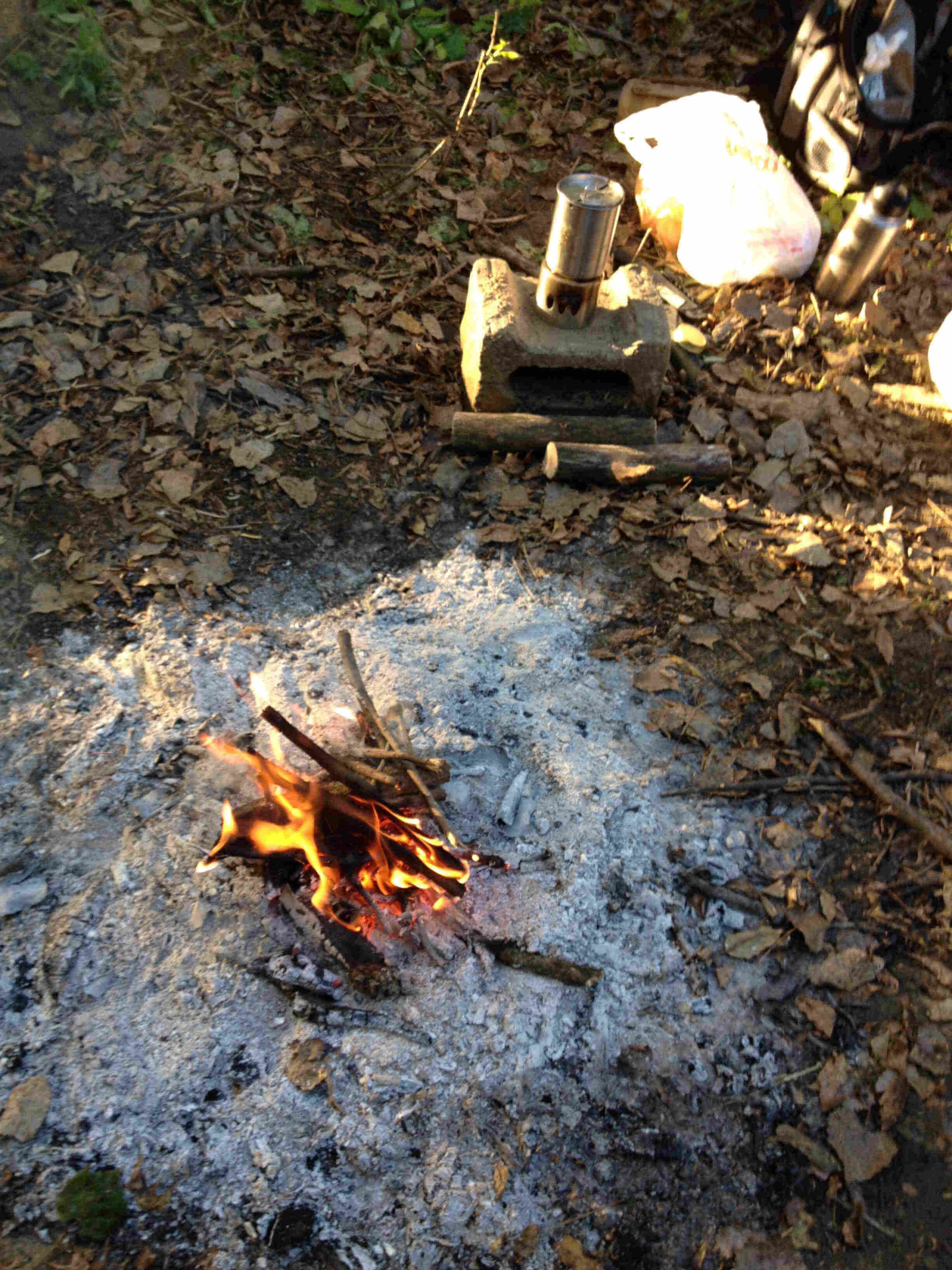 Downward view of a campfire, burning on the leaf covered ground