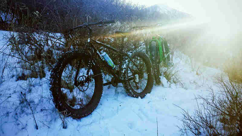 Left side view of a black Surly fat bike, parked in the snow and weeds, with another bike behind, in the woods