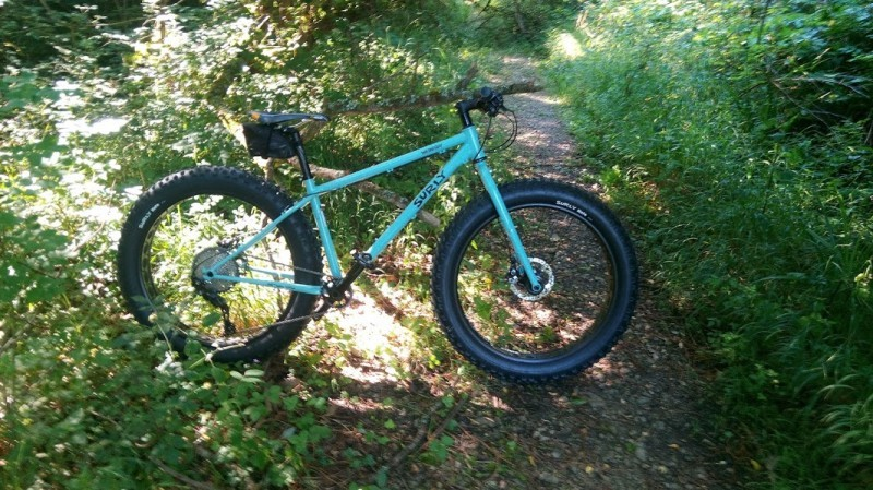 Right profile of a Surly Wednesday MY17 fat bike, turquoise, parked across a dirt trail in the weeds
