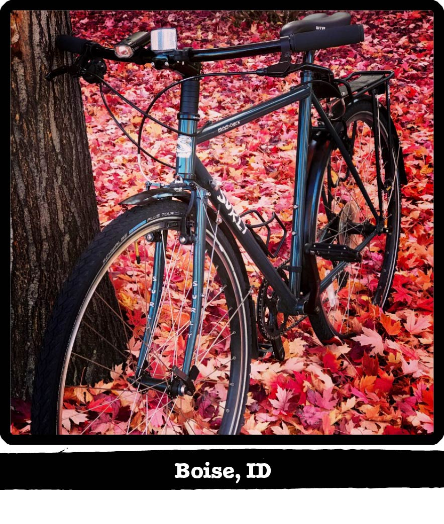 Front view of angle left side of a Surly bike leaning on a tree in colorful leaves-Boise, ID banner under image