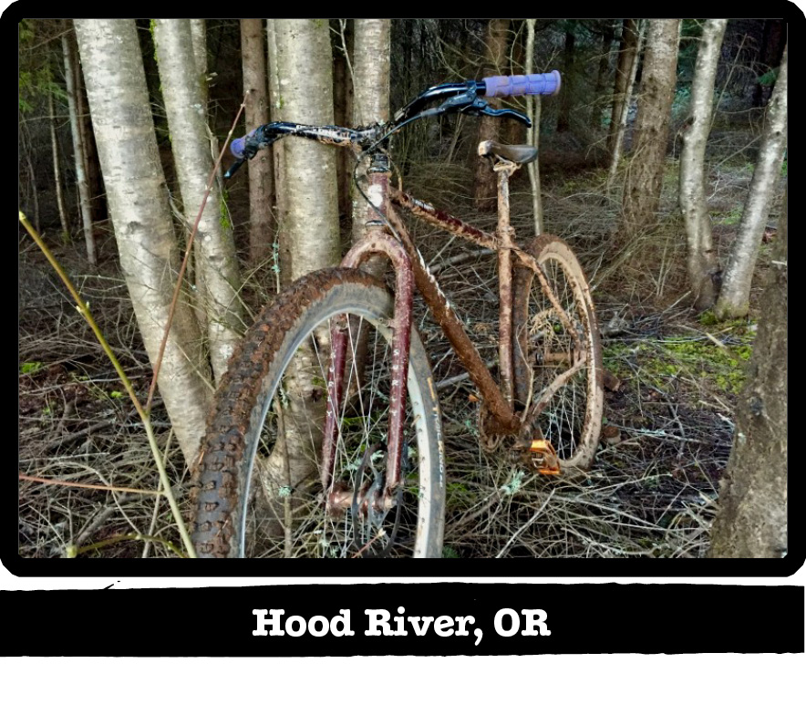 Front view of a muddy Surly bike against a cluster of trees in the woods-Hood River, Oregon banner shown below image
