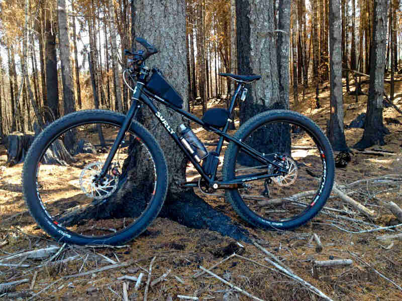 Left side view of a Surly Krampus bike, black, in front of a tree in the forest
