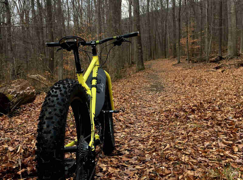 Rear view of a yellow Surly fat bike facing up a leaf cover trail in the woods