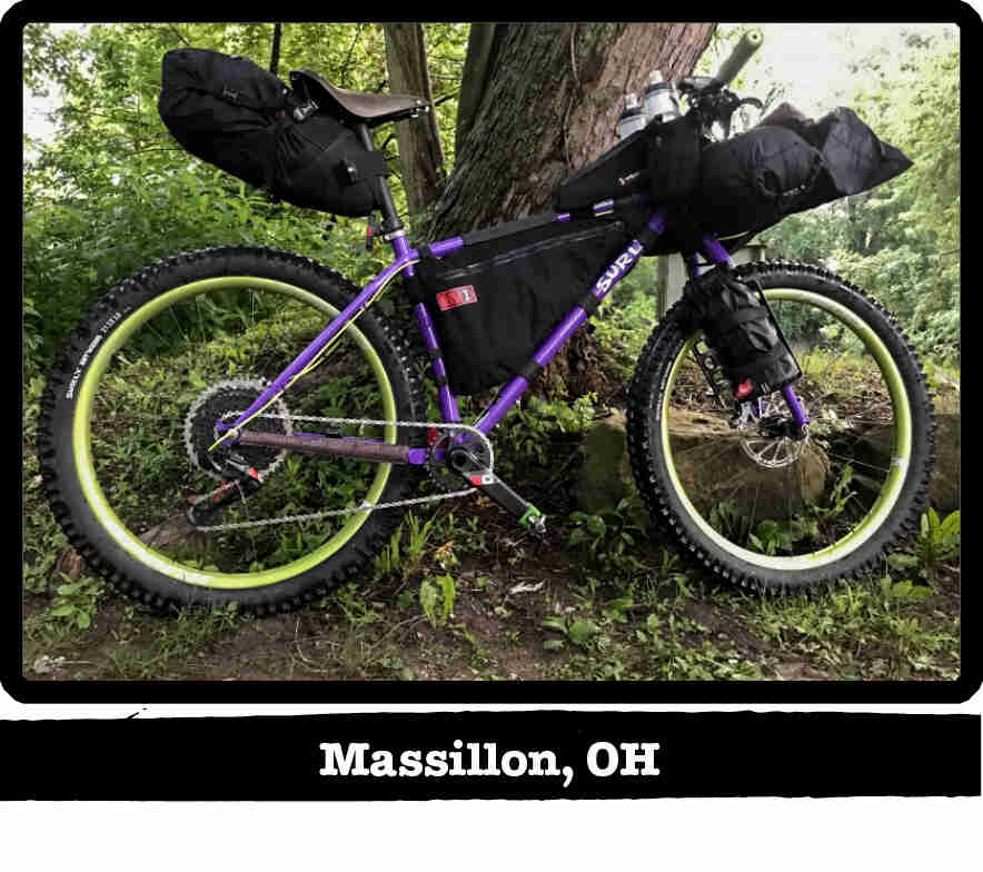 Right profile of a Surly Karate Monkey bike, purple, in front of a tree in the woods - Massillon, OH tag below image