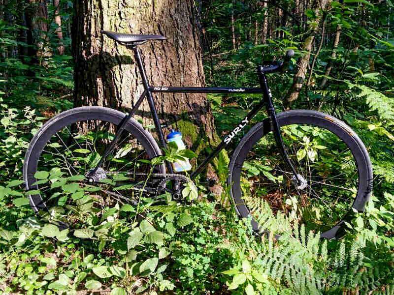 Roller Dump Surly Bikes