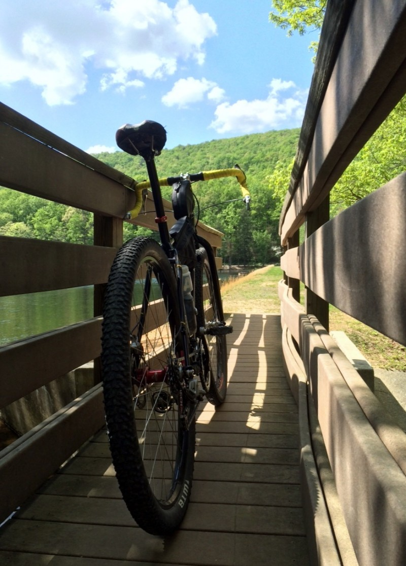 Rear view of a Surly Karate Monkey bike, parked against the handrail of a pedestrian bridge over water, with trees ahead