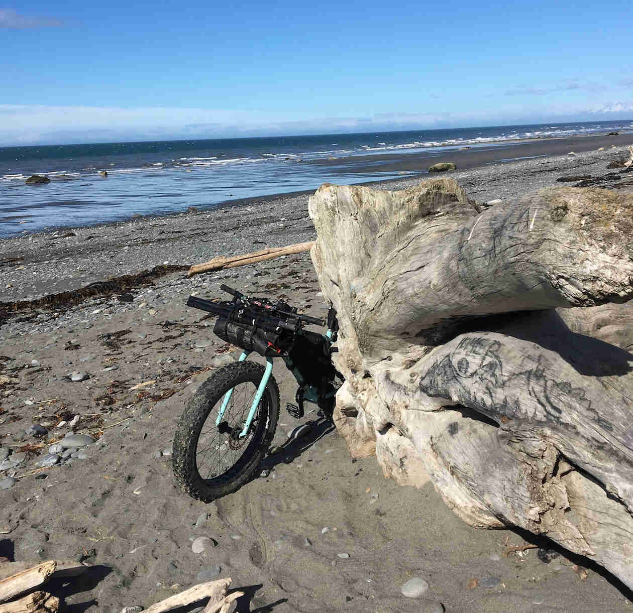 The front of a Surly fat bike sticks out from behind a large log, on a seashore, with water in the background