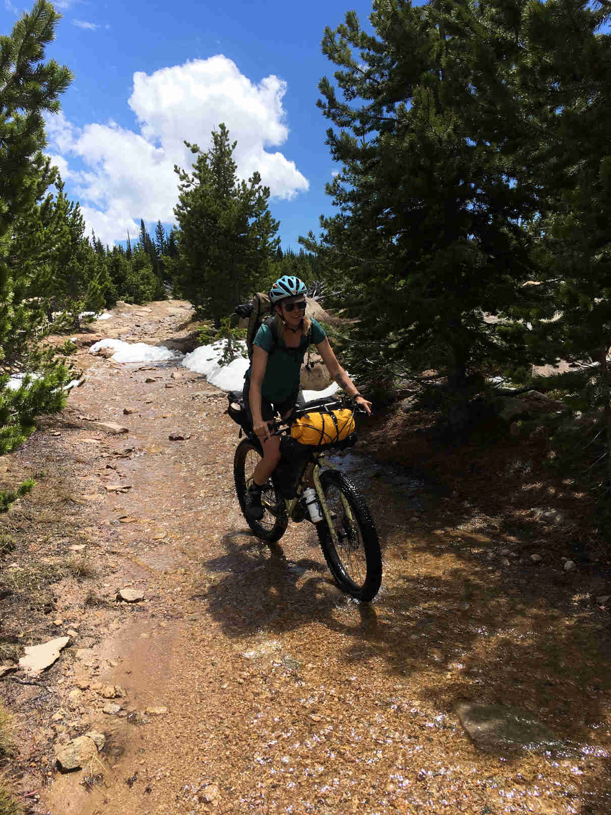 Front view of a cyclist riding a Surly ECR bike up a rocky trail hill with pine trees on the side