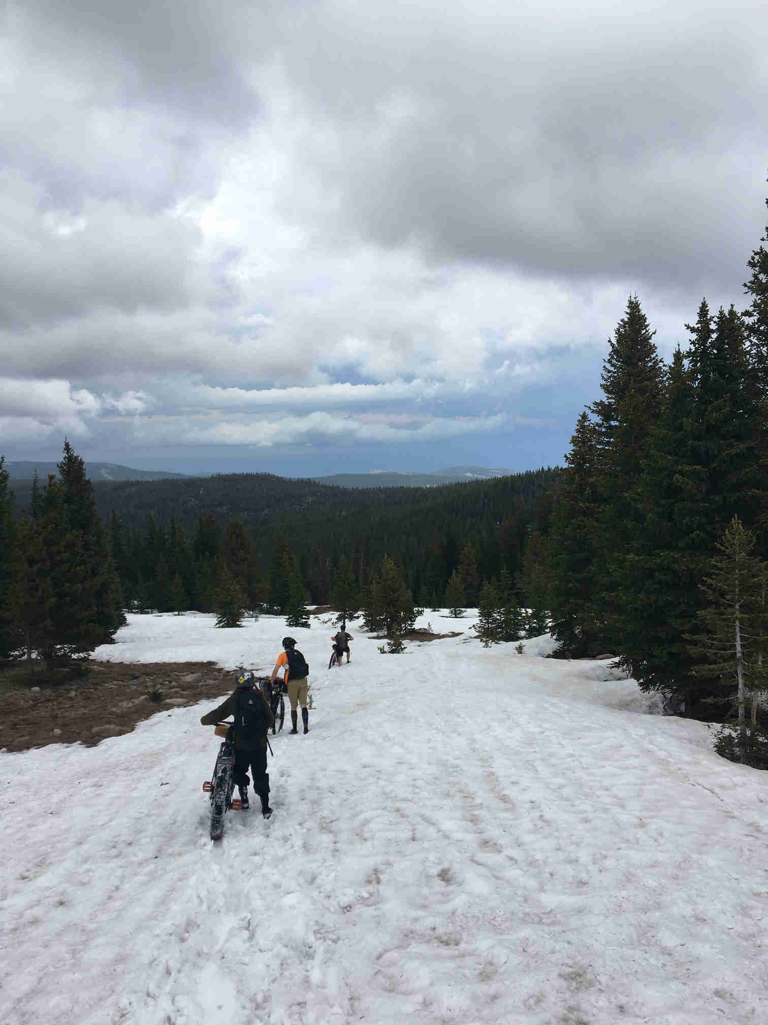 Rear view of 3 cyclists walking their bikes down a snowy hill, with pine trees and mountains ahead