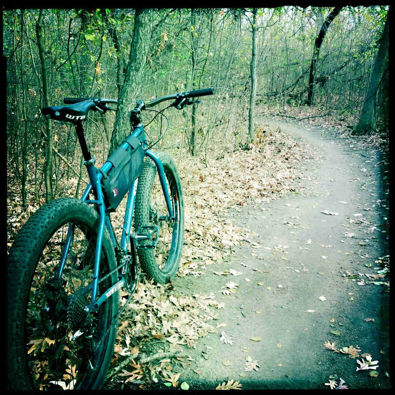 Rear, right side view green Surly Krampus bike with a frame bag, parked on leaves, beside a dirt trail in the woods