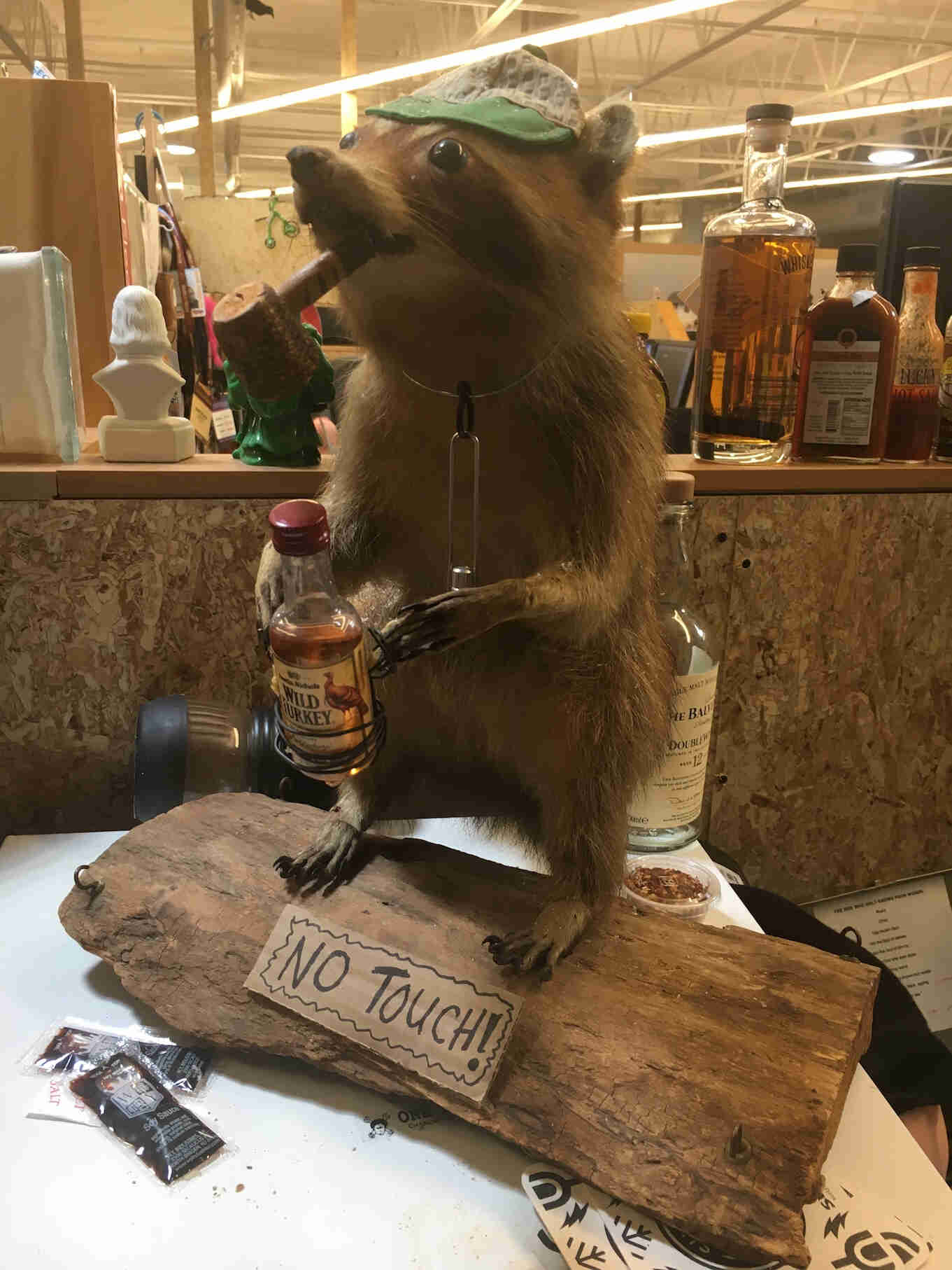 A taxidermied raccoon, with a cap, corncob pipe in it's mouth and holding a small bottle of whisky