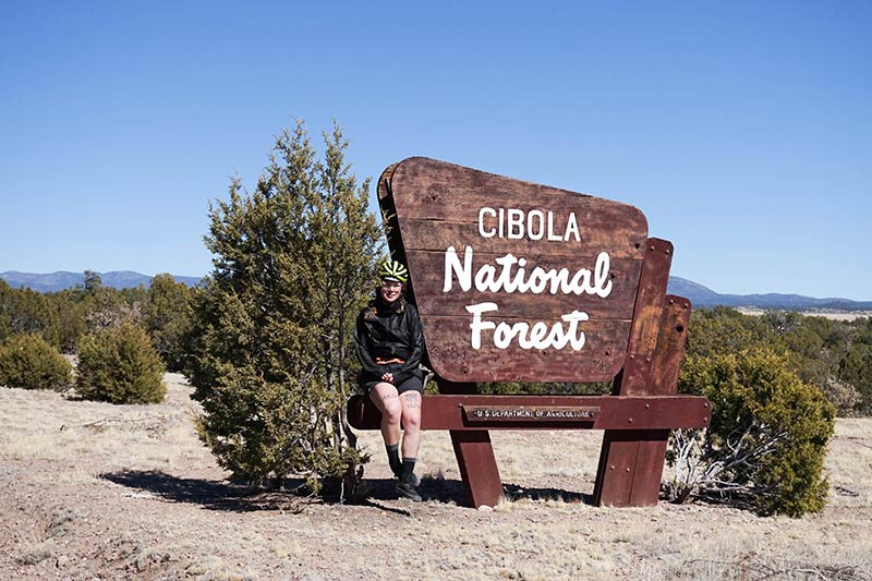 Front view of a person sitting on a bench connected to a Cibola National Forest sign with small bushes on each side