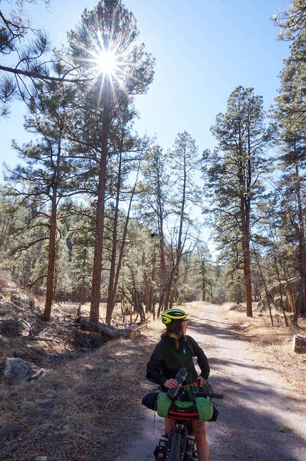 Front view of a cyclist standing on their bike looking backwards on a dirt trail with tall pine trees to the sides