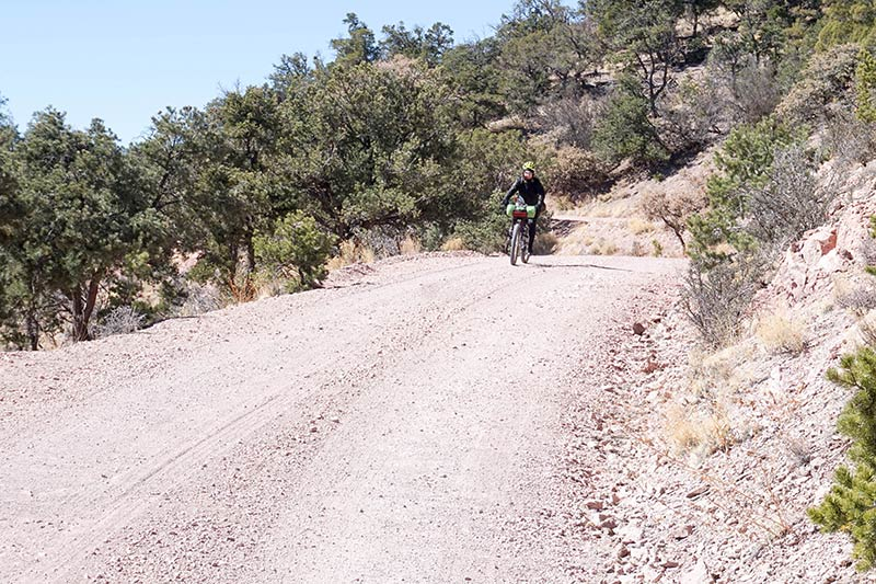 Front view of a cyclist riding down a hill on a sandy, gravel road with hills and desert trees behind