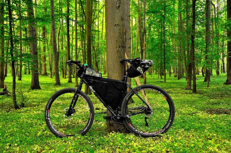 Left side view of a black Surly Ogre bike with a frame bag, parked on the grass, against a tree in a green forest