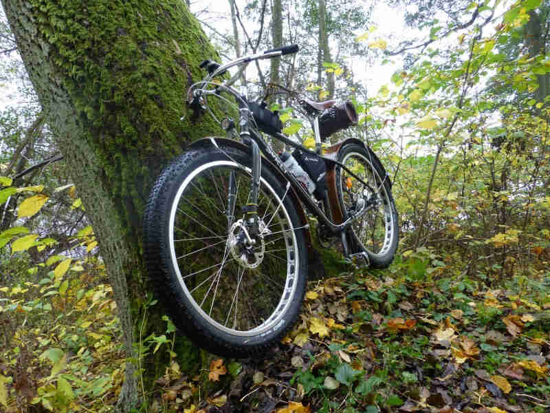 Front left view of a Surly ECR bike facing downhill, leaning on a mossy tree in the woods