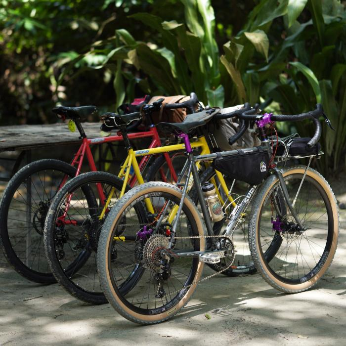A row of Surly Bikes