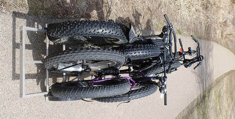 Rear view of 2 Surly fat bikes, loaded on trailer behind a Surly Big Dummy bike, facing down a paved trail