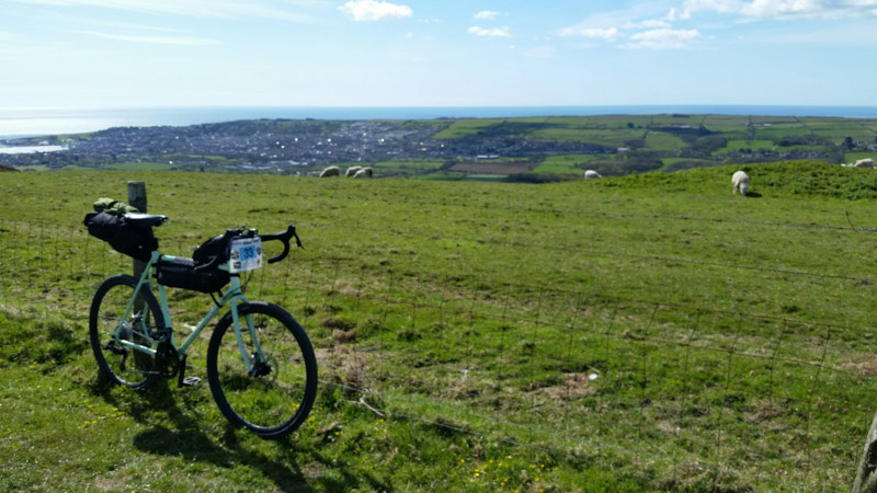 Right front view of a Surly bike next to a green field with sheep in the background