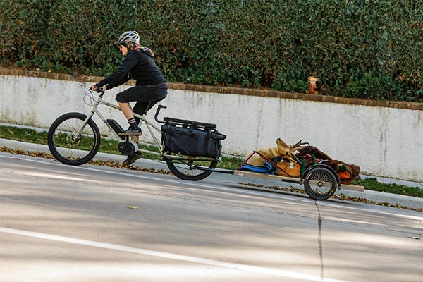 Cyclist rides a Surly Big Easy bike with a loaded trailer up a hill on a street