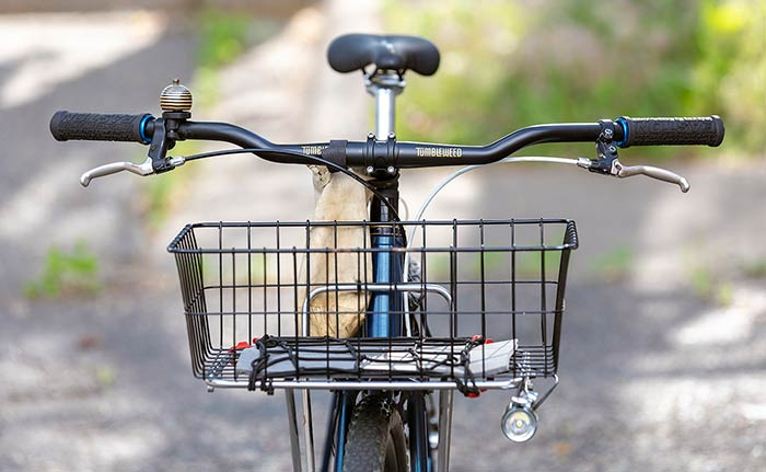 Front view of bike, black riser handlebar with grips, brake levers, bell, front rack with light mounted on one side and basket