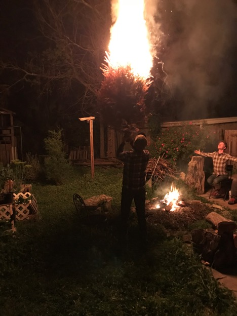 Person holds a burning bush next to a campfire at night with a person holder their arms out