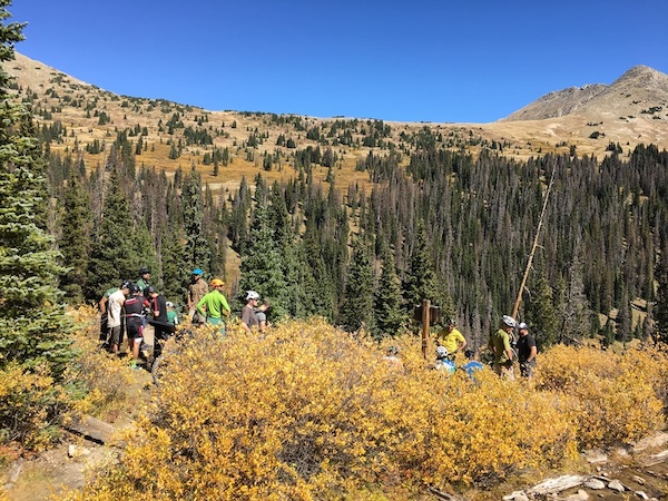 A group of people gathered in yellow brush with pine trees, mountain hills and blue sky behind them