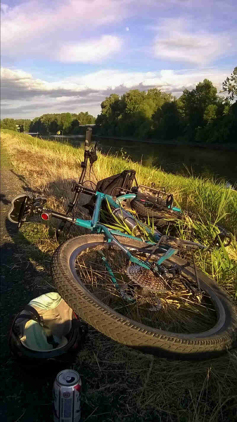 Rear, ground level view of a green Surly Troll bike, laying down on a grassy bank of a river