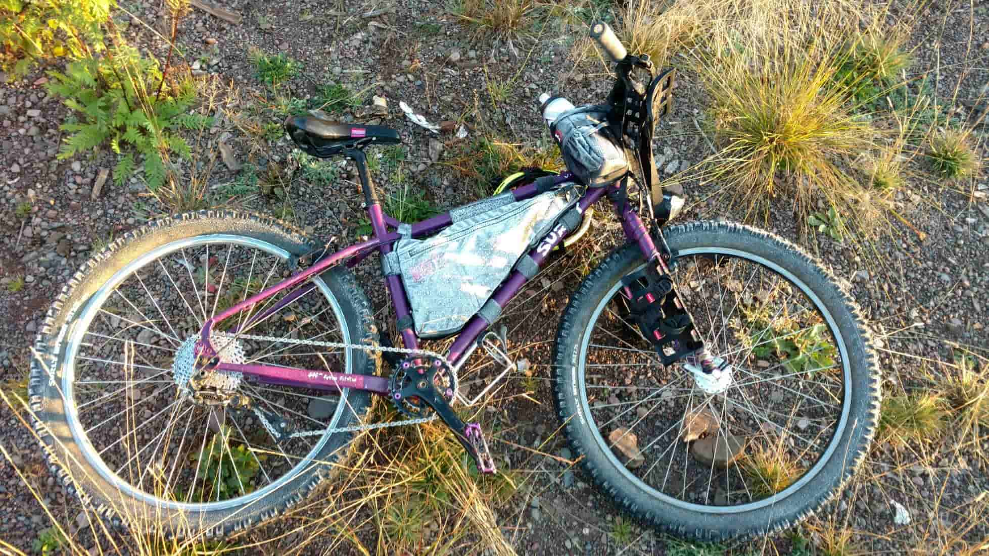 Downward left side view of a purple Surly Troll bike loaded with gear, laying on it's left side in gravel and weeds