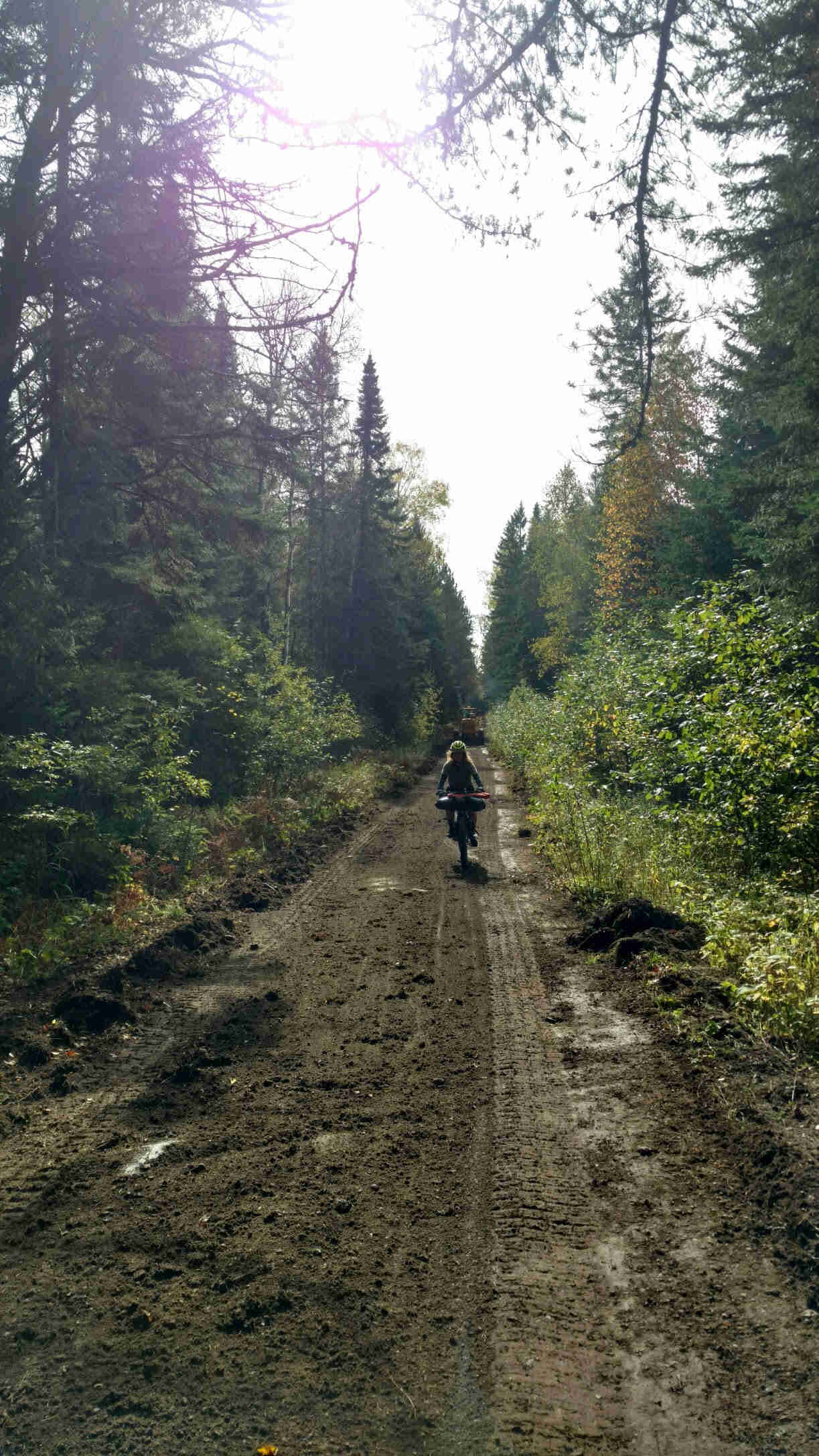 Front view of a cyclist riding down a narrow dirt road with trees on the sides