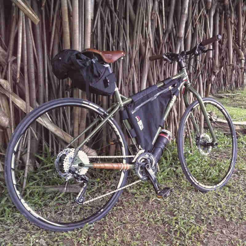 Right side view of an olive drab Surly Ogre bike, parked along a group of trees that are growing very closely together
