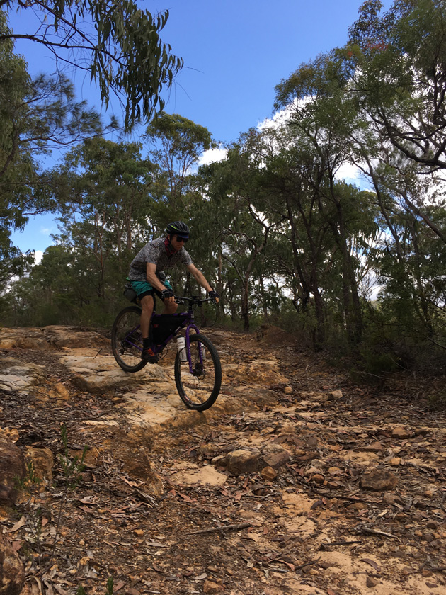 Cyclist riding down a rocky hill trail in the trees