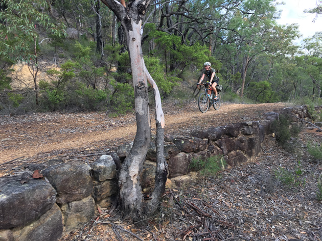 Left side view of a cyclist riding down an incline on a dirt trail and a hill with trees in the background