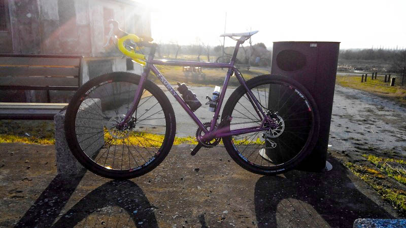 Left side view of a purple Surly Straggler bike, parked against a park bench and trash can