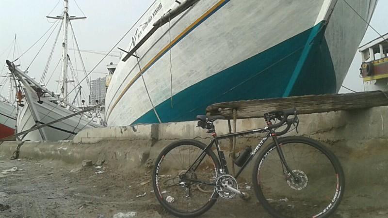Frostbike Dumpin Surly Bikes